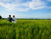Photographe mariage en provence toulon